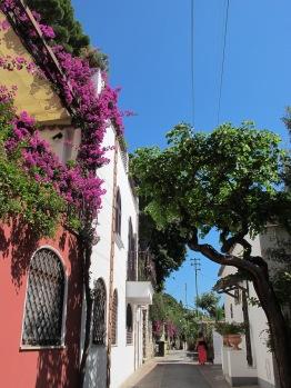 Capri 9